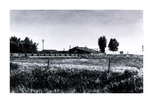Robert Dalton, North Pasture 1987