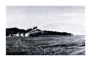 Robert Dalton, Cornfield, 1987